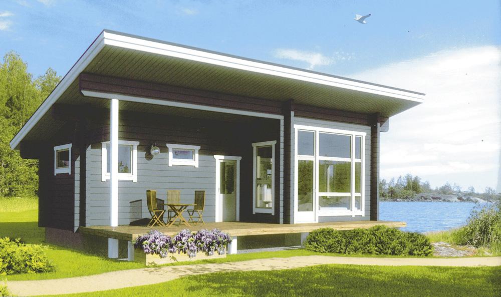 Одноэтажные дома с односкатной крышей